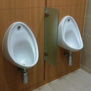 Glass Urinal Screens